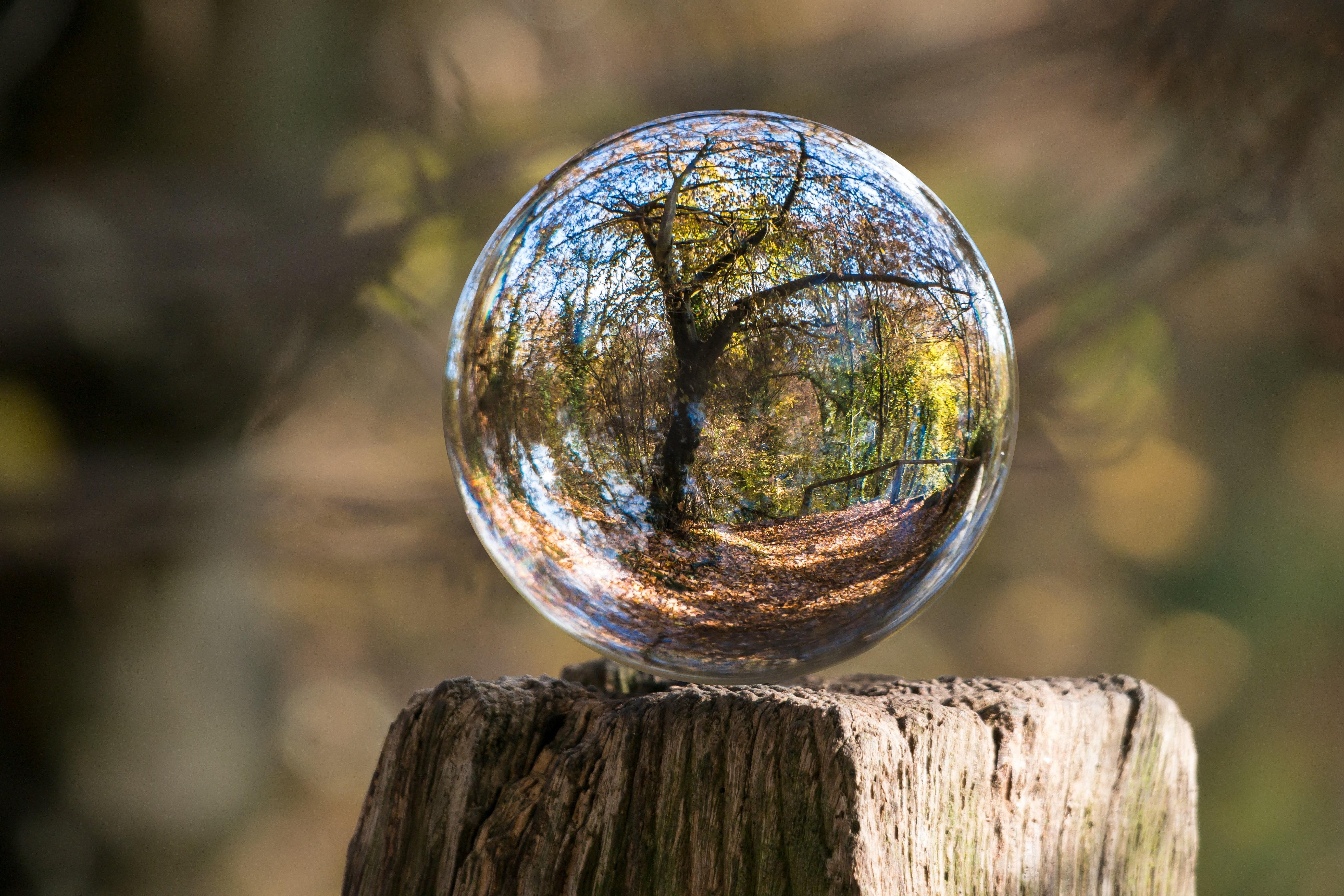 yeryüzünde tükenen maddeler, yaşam, Manşet, doğa, bilimsel gelişmeler, bilim