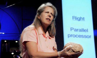 Manşet, jıll bolte taylor, içgörü, beyin nasıl çalışır, beyin