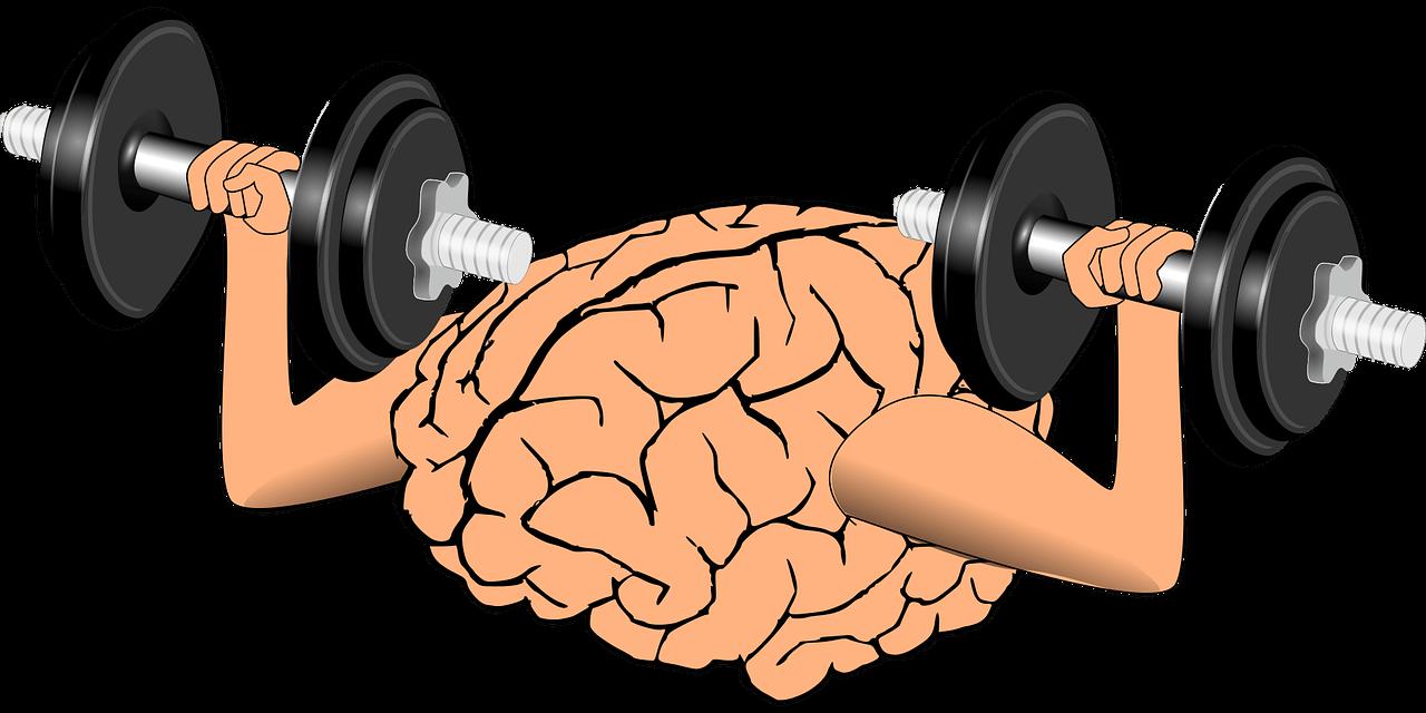 zihniyet, sabit zihniyet, Manşet, gelişim odaklı zihniyet, gelişim, başarı