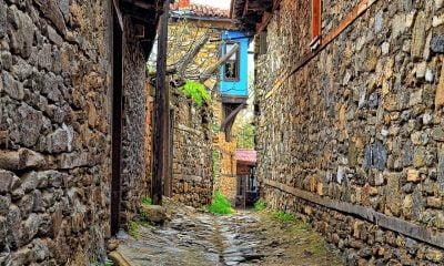 türk kültürü, Manşet, kültür farkları, kültür, geert hofstede